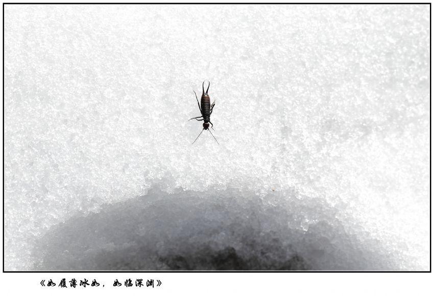 7X2A5095_副本.jpg
