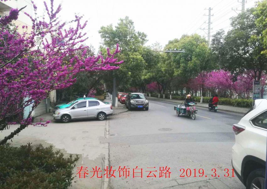 微信图片_20190401160554.jpg
