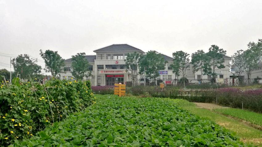 万绿丛中的东南村委.jpg