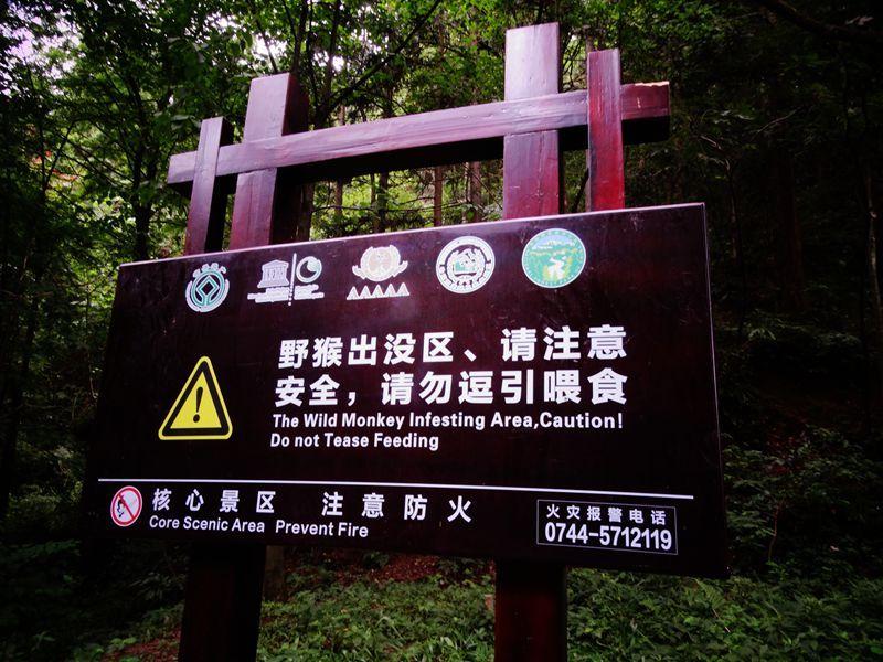 森林公园131.jpg