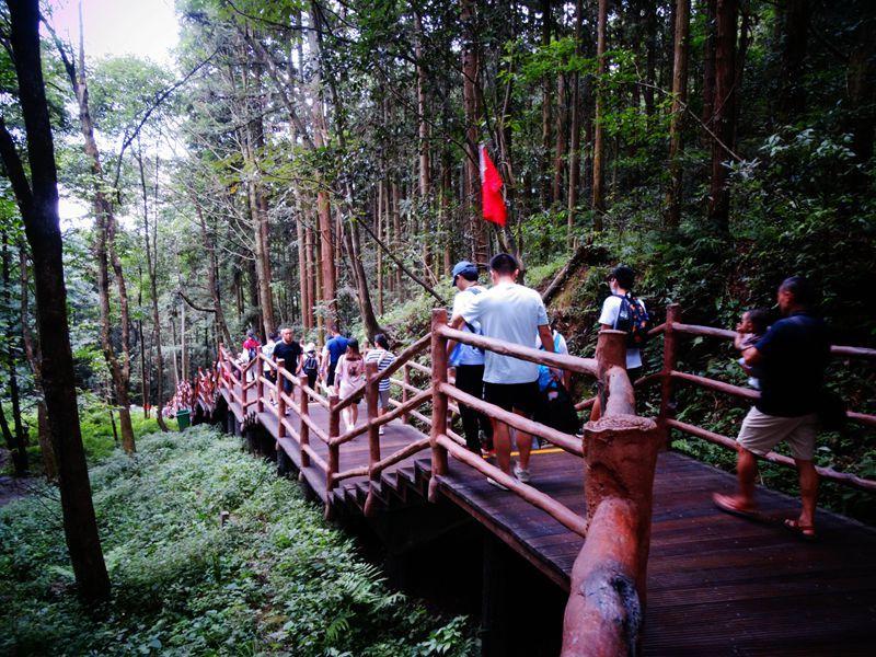 森林公园133.jpg