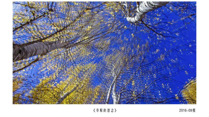 IMGP3875-1.jpg
