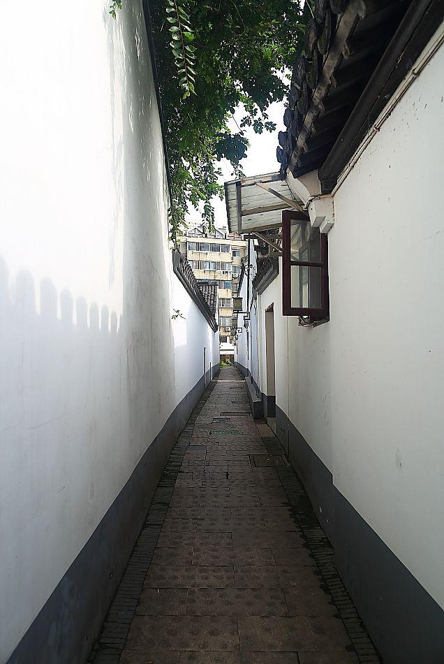 院35.JPG