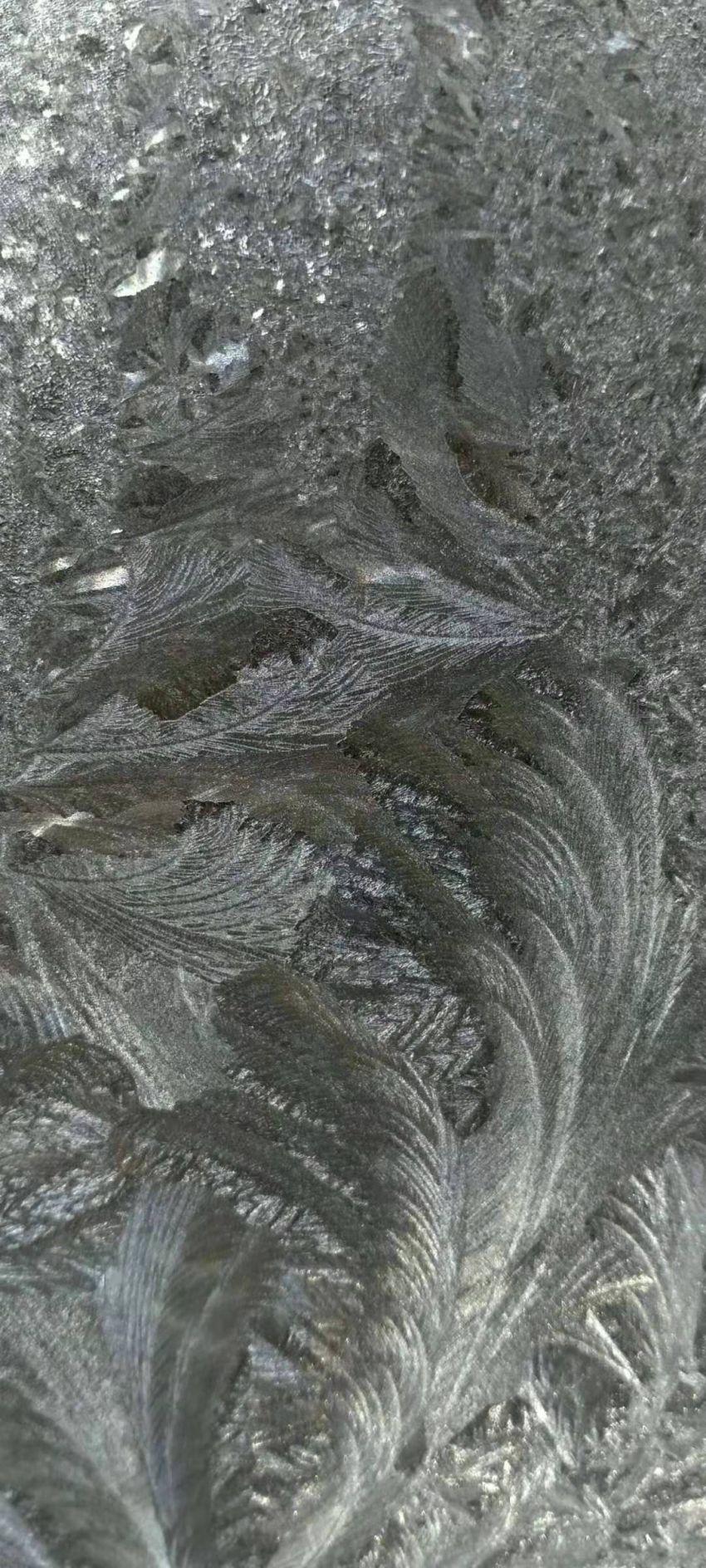 微信图片_20210108094918.jpg