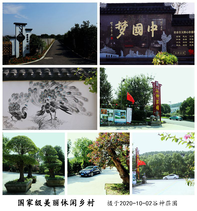 D.《徒门塘美丽休闲乡村》组照之四.jpg